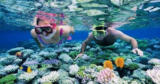 Snorkeling at Havelock Island of Andaman Nicobar Islands