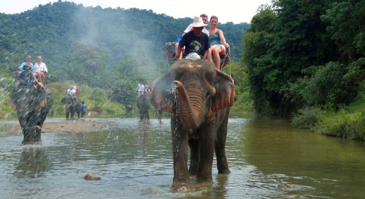 Andaman Nicobar Islands Wildlife Safari