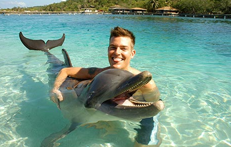 Swim with the Sharks, Turtles, Dolphins and Tropical Fishes