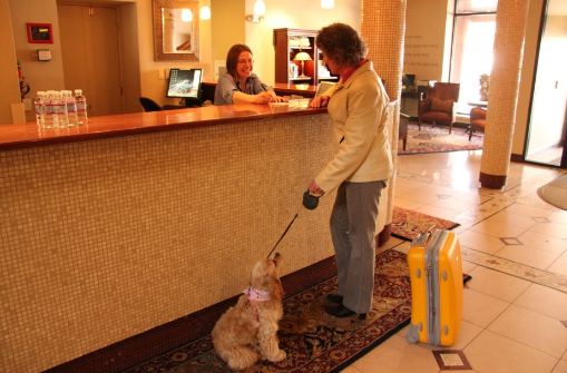 Pet Friendly Colorado Springs cheap hotels