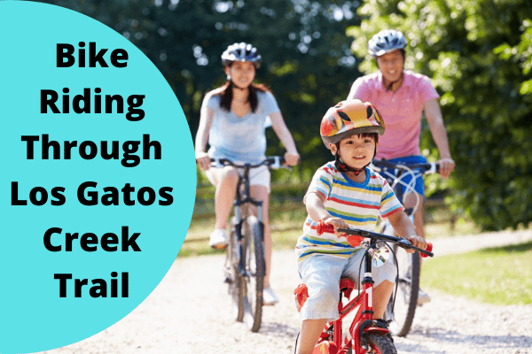 Bike Riding Through Los Gatos Creek Trail